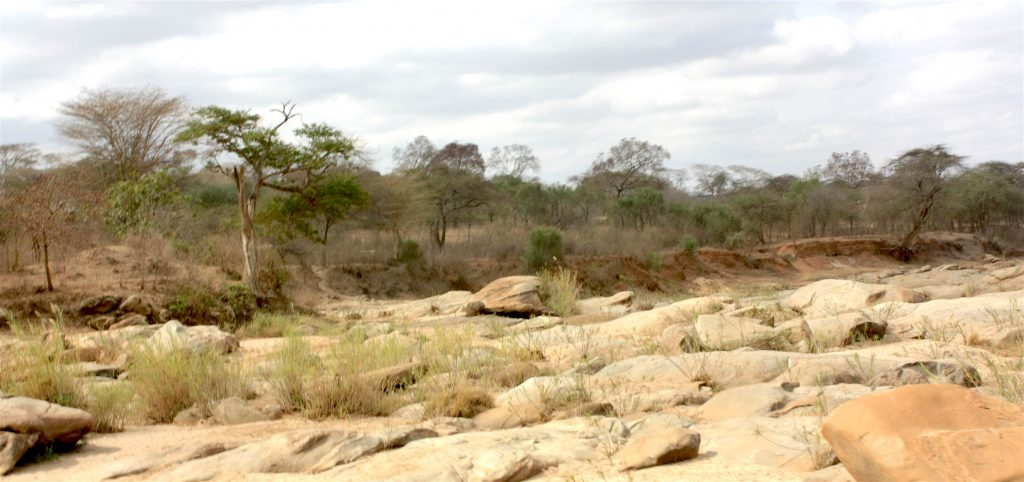 Dry river bed in Machakos county, Kenya.