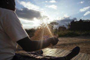 Bester Glandson, a smallholder farmer in Malawi.